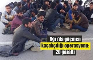 Göçmen kaçakçılığı operasyonu: 20 gözaltı