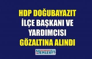 HDP DOĞUBAYAZIT İLÇE BAŞKANI VE YARDIMCISI GÖZALTINA...