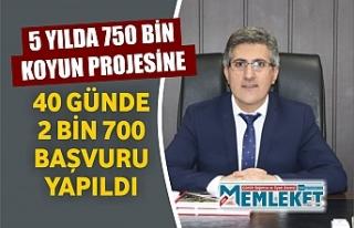 5 YILDA 750 BİN KOYUN PROJESİNE 40 GÜNDE 2 BİN...