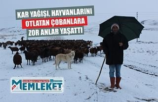 Kar yağışı, hayvanlarını otlatan çobanlara...