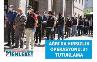Ağrı'da hırsızlık operasyonu: 21 tutuklama