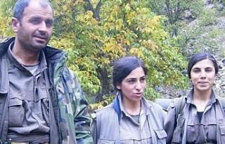Örgütten Kaçan Kadın Teröristin Anlattıkları...