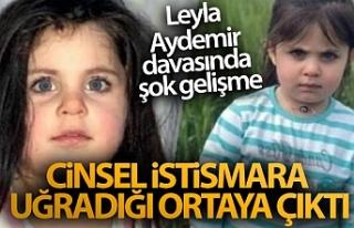 Leyla Aydemir'in cinsel istismara uğradığı...