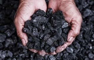 Ağrı'da kömür fiyatlar el yakıyor! Tonu 2900...
