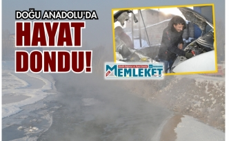 Doğu Anadolu'da hayat dondu