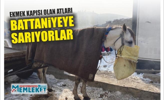 Ekmek Kapısı Olan Atları  Battaniyeye Sarıyorlar
